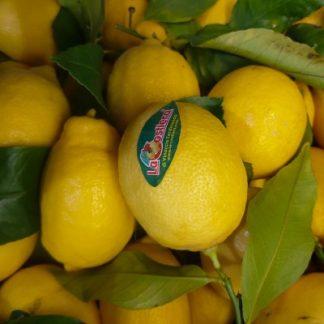 unwaxed lemon