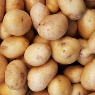 Mid New Potatoes